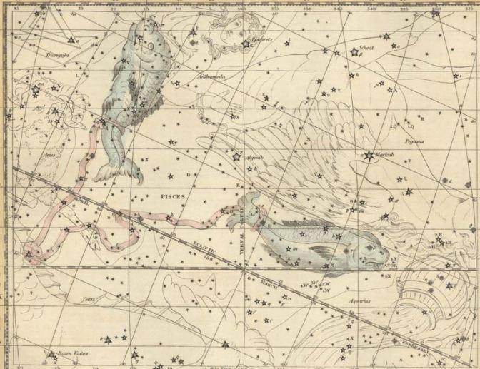 Dos peces atados en el cielo: Constelación de Piscis