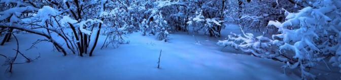 El solsticio de invierno ha llegado