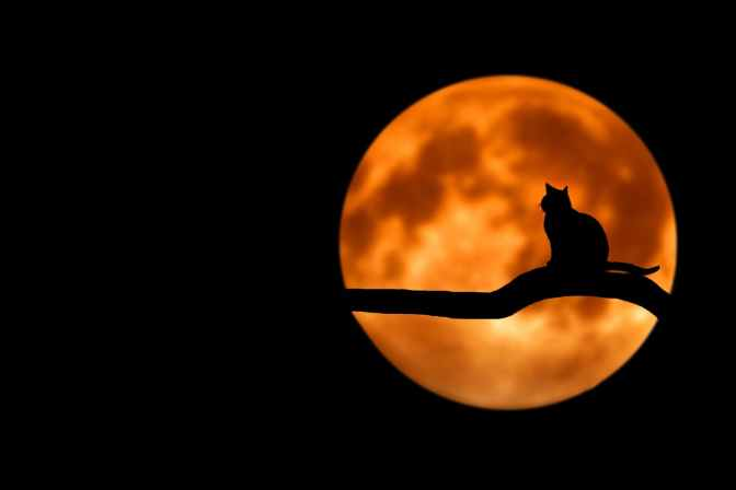 Noche internacional de observación de la Luna