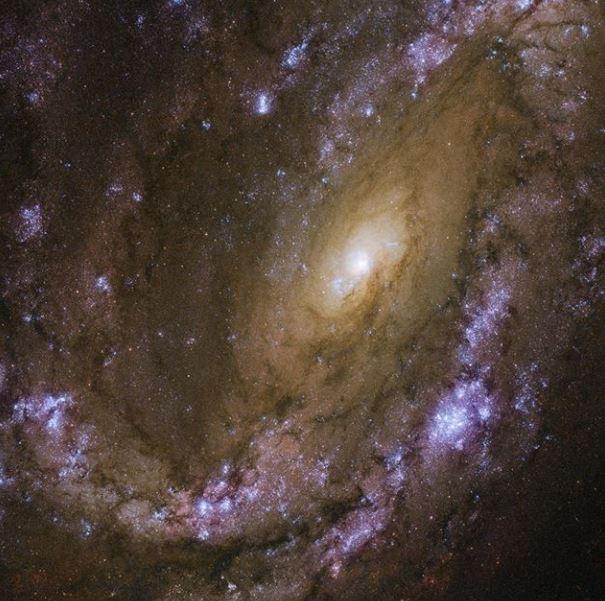 Las explosiones de supernova y la galaxia NGC 4051